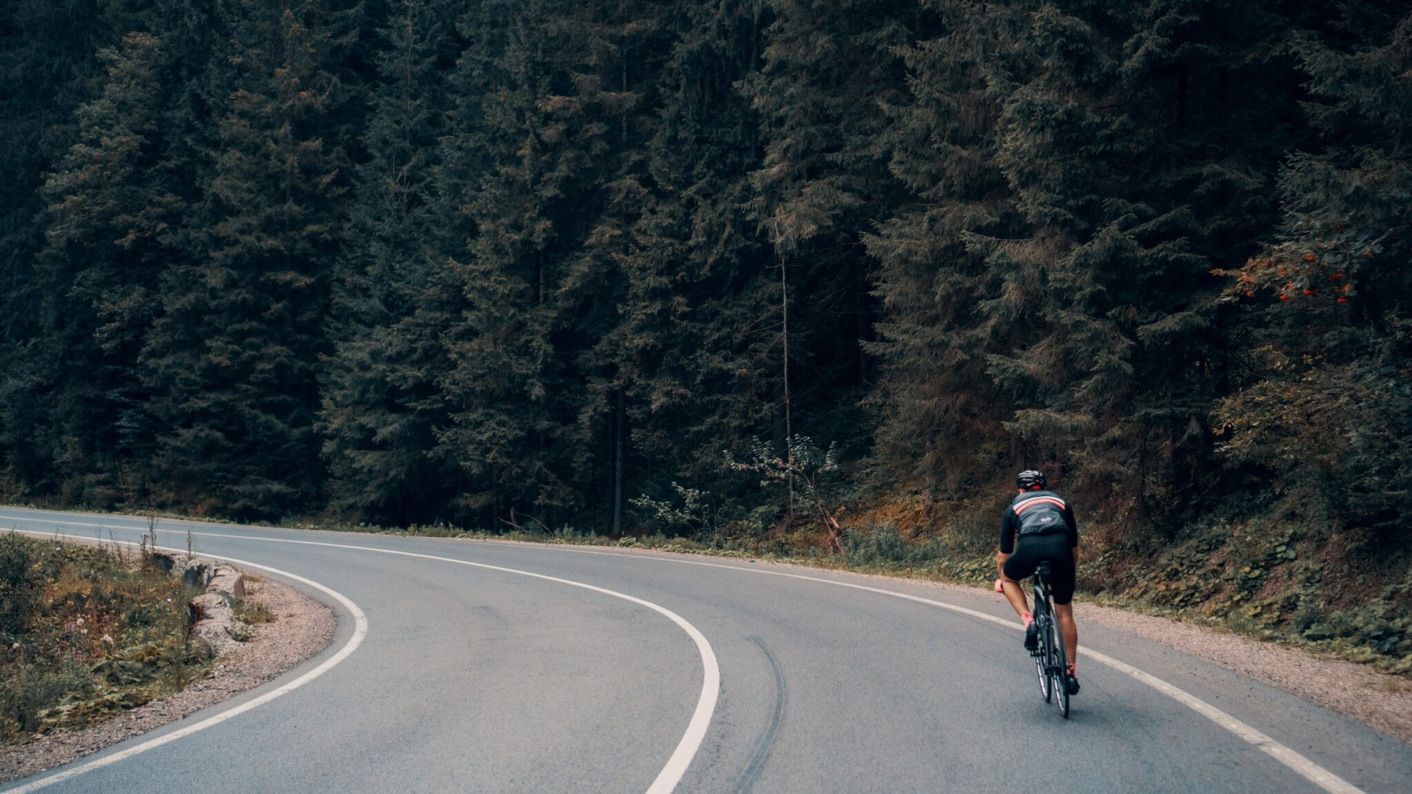 Mountain Bike Vs. Road Bike and the Benefits of Cycling in 2021